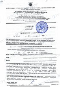 Получена Экспертиза протоколов по согласованию с Домодедово